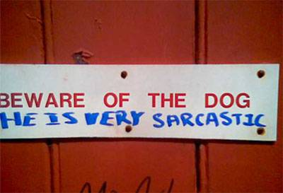 Sarcasticdog